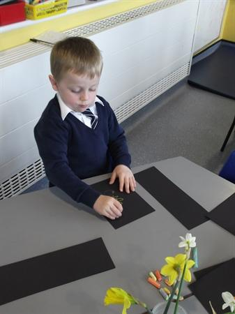 We looked at the daffodils really carefully