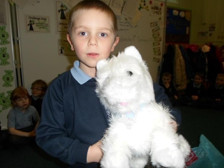 Meet Benjamin, he was so well behaved!