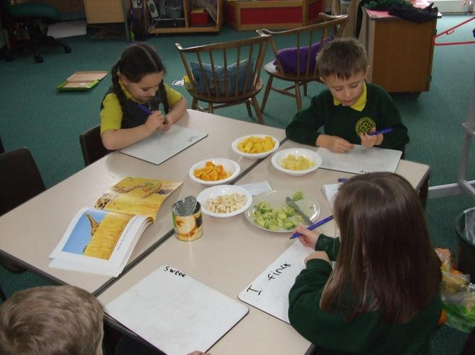 We tried to use WOW words to describe the fruit.