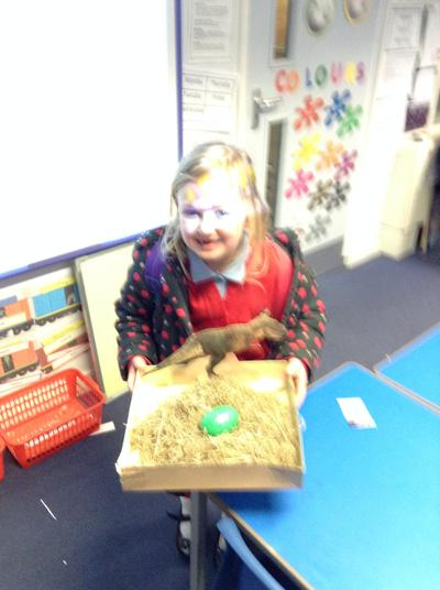 Emily brought in a dinosaur nest