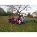 Bulb Planting at Mansfield Road Park