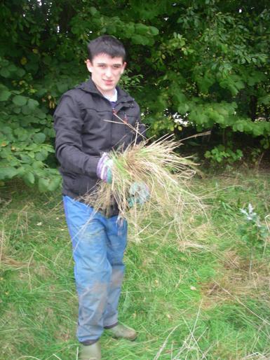 Tree conservation