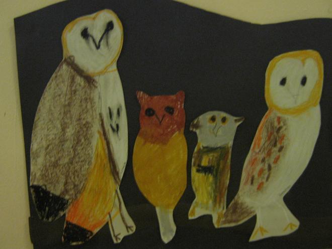 Year 1 & 2 Owls