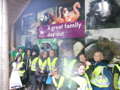 October 2013 - Twycross Zoo - Healthy Eating & Teeth - Year 3 1