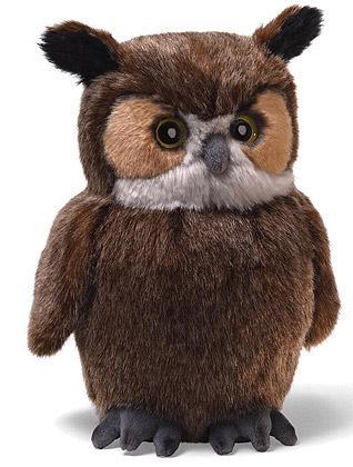 Reflective Owl