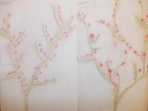 Year 1 used pastels to create their Blossom trees
