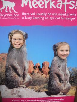 October 2013 - Twycross Zoo - Healthy Eating & Teeth - Year 3 2