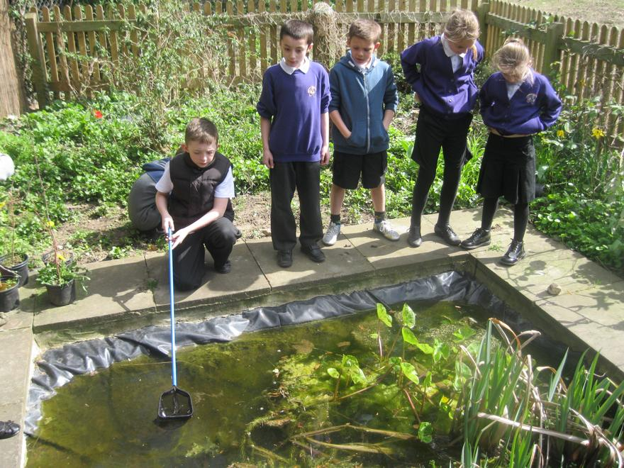 Year 5 Maths lesson working around the pond