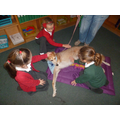 The children loved meeting the dogs.