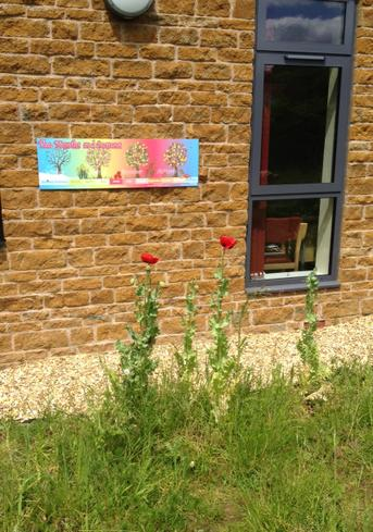 Our first flowers next to our new seasons sign.