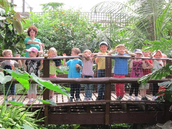 Our Trip to the Butterfly Park