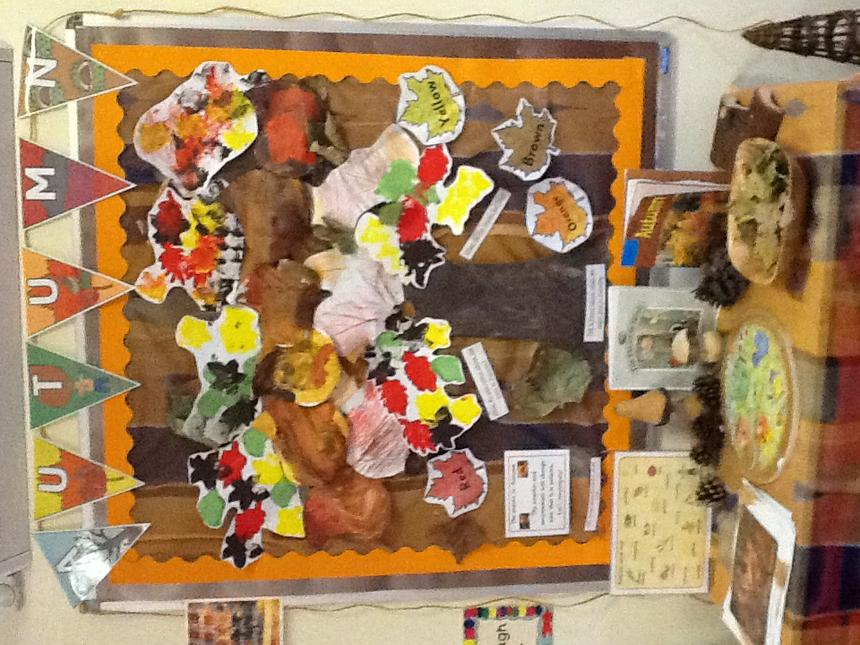 Our autumn display.