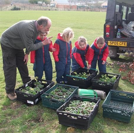 Willow dens, minibeast hotel and planting trees a