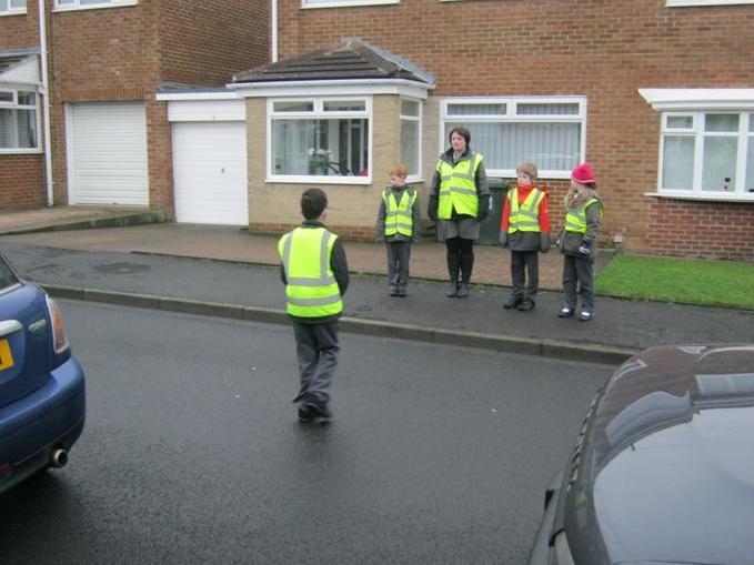 Pedestrian training - Harvey very sensible!