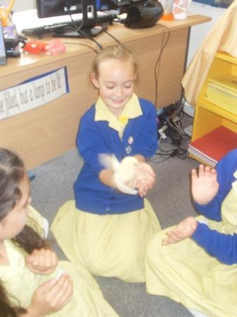 The Chicks visit Amos!