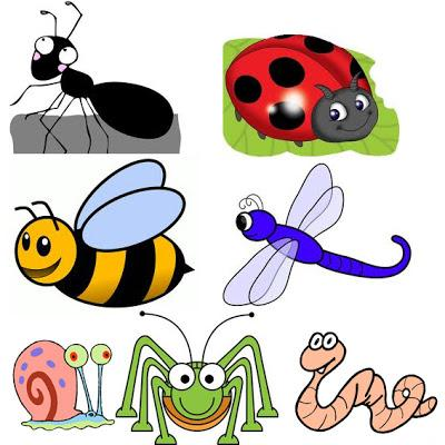 Image result for minibeasts clipart