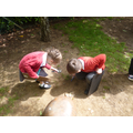 The children went on a bug hunt