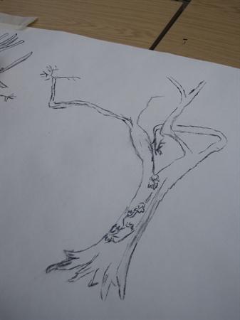 Elterwater Tree Whisperers (Mar 14)
