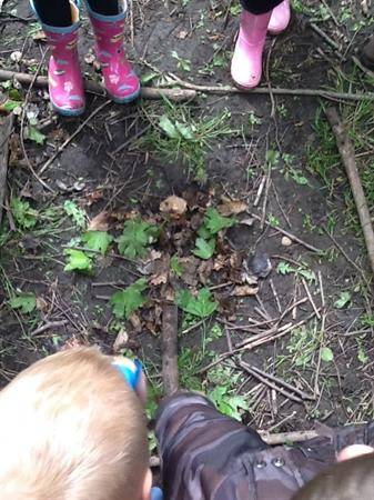 This one is of a spider and his spider web!