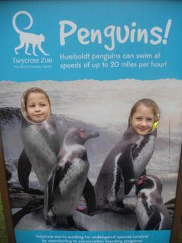 October 2013 - Twycross Zoo - Healthy Eating & Teeth - Year 3 5