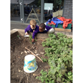 Cooking up a delicious meal in the Mud Kitchen.