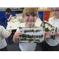 We made collages using natural materials.