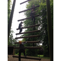 Challenge course and Jacob's ladder.