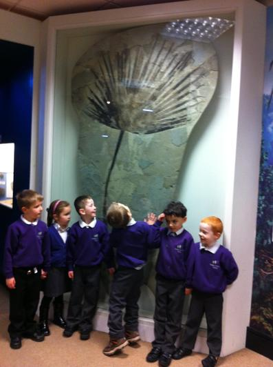 And lots of skeletons and fossils too.