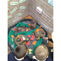 Exploring the rainforest floor!