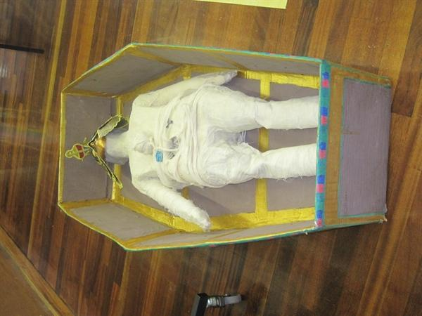 the mummy in it's coffin