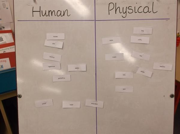 Sorting human and physical features...