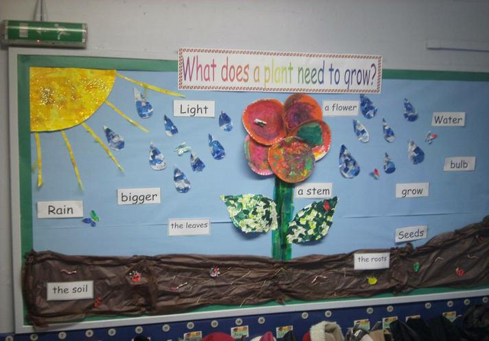 Year 1 - What plants need to grow.