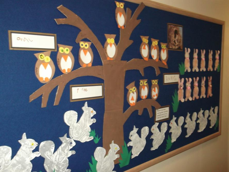 Nursery have been learning about woodland animals