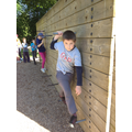 Problem solving, trapeze, fencing and climbing.