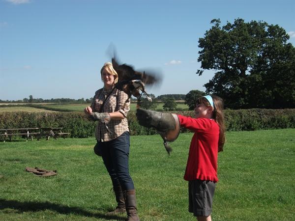 Alice Holding a Harris Hawk