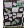 P4C Display on Bullying @ Penrith Library