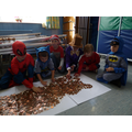 Covering Pudsey with coins