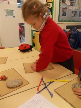 Our clay Lady Birds