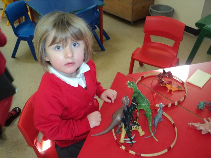 Sorting the dinosaurs.