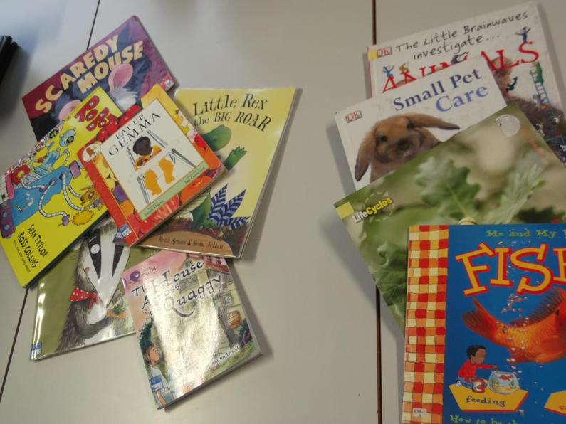 We sorted books into Fiction and Non-Fiction