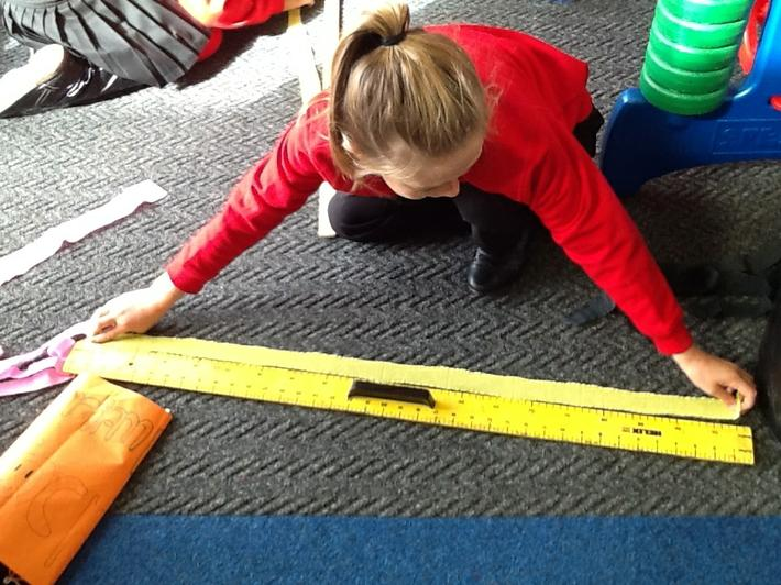 Measuring one metre lengths.