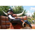 Community Police on the bucking bronco