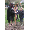 Planting our apple trees