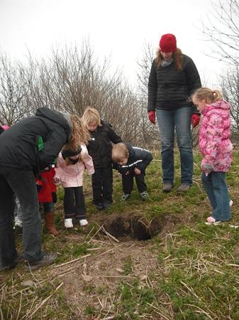 We spotted a rabbit burrow!