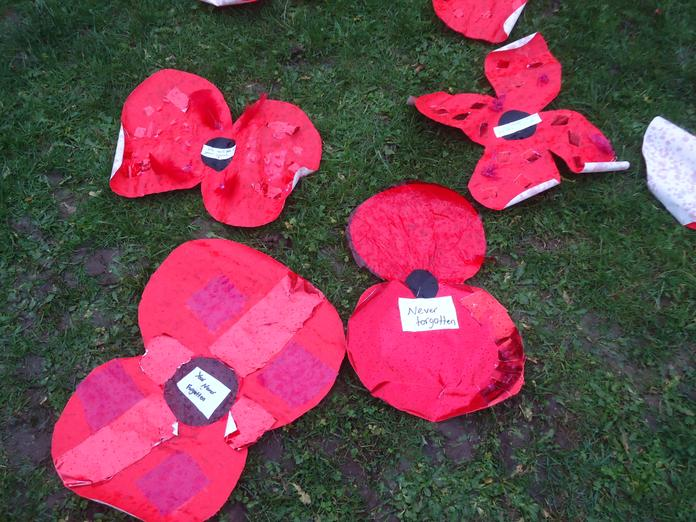 Our poppies lived as fleetingly as real poppies