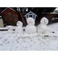 Miss Banham's snow family