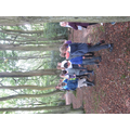 Into Mirk Wood