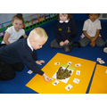 Sorting food from animals and plants