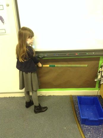 Measuring - what is longer or shorter than a m?