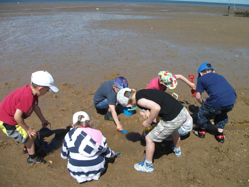 Digging for water.